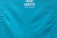 iaeste2